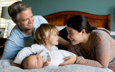 Family > Politics